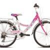jalgratas tüdrukutele KELLY T611