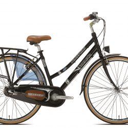 Jalgratas Storica T141 must