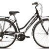 Jalgratas RONDINE T481B