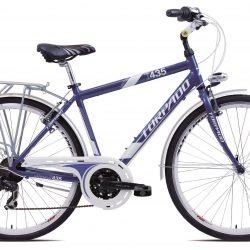 Jalgratas PARTNER T435A