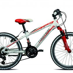 """20"""" jalgratas"""