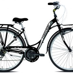 Jalgratas PARTNER LADY T436B