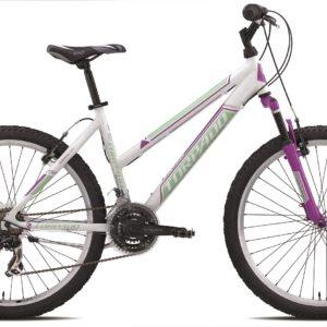 26 jalgratas STORM T591