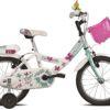 jalgratas tüdrukutele TRILLY T671A