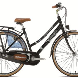 Jalgratas STORICA T141