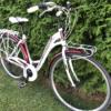 Kasutatud jalgratas Torpado Partner1
