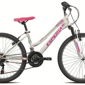 24 jalgratas ENJOY E8400